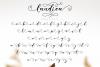 Laudiea Script example image 8