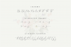 The Britney - Calligraphy Script example image 11