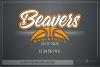 Beaver, Basketball, Sport, Team, Logo, PRINT, CUT, DESIGN example image 5