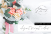 Germany - Luxury Font Duo example image 12