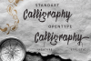 Scriptease Typeface example image 2
