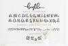 Bristle - Beautiful Font Script example image 3