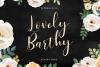 LovelyBarthy example image 1