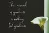 Amadora font example image 3