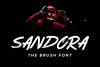 SANDORA BRUSH FONT example image 1