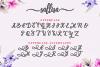 Sallisa - beautiful script font example image 2