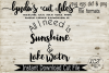 All I need is Sunshine and Lake Water//Summer//SVG//DXF//EPS example image 2