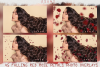 Falling Rose Petals Photo Overlays , Rose Petals, Red Rose example image 3