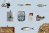 Fishing Vintage Badges Logos / Fish Logo / Vintage Fish Logo example image 2