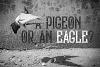 Bald Eagle Typeface example image 6