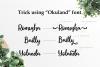 Okuland // Luxury Script Font example image 5