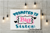 Promoted to big sister example image 1