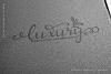 Daysha - Wedding Font example image 10