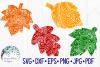 Fall Bundle, Pumpkins, Zentangle, Mandala, SVG Cut Files example image 6