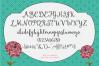 Margherite Script + Bonus Frames example image 3