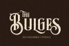 Bulges Typeface example image 1