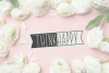 BANNER CUTIES - Font Duo example image 2