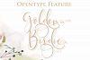 hokie | Beauty Stylistic Calligraphy example image 5