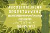 Freaky Tiki - a fun tropical font example image 4