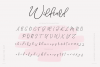 Wildcard | A Modern Calligraphy Script example image 12