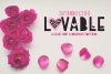 Lovable & Ornaments example image 1