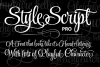 StyleScript Pro - Part of the Amazing Scripts Bundle! example image 3