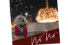 Christmas Words and Phrases - Overlay Font example image 8
