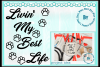 Cat lover livin' the best life cute paws svg png dxf eps pdf example image 1