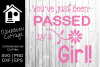 Passed By A Girl Car Decal Design example image 2