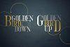 Golden Bird Serif font Cool Extras example image 2