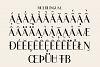Traditional Mini Font Bundle example image 20