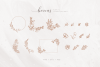 Sunchery Script With Free Extras example image 15