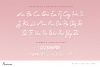 Femme Beauty Display Font example image 9