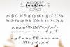 Laudiea Script example image 7