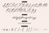 Wild Magnolia Signature Script Font example image 12