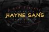 Hayne Script + Sans example image 12