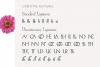 Hellen - Serif Font example image 18