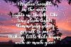 Firefly Nights - A Duo Font Family - Pretty Script example image 4