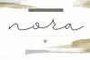 Nora - Handwritten Script Font example image 1
