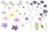 Purple Flowers Sublimation Clipart Bundle Wedding Floral example image 3