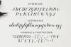 balerina script example image 13