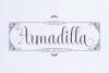 Armadilla example image 1