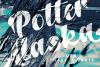 Potter Alaska example image 1
