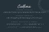 Callina // Bold Signature example image 6