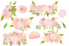 Watercolor Blush Pink Flowers Clipart Bundle Peonies Rose example image 2