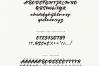 Fonts Bundle. 90% OFF example image 17