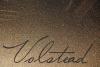Volstead example image 1