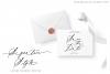 Wild Magnolia Signature Script Font example image 5