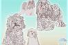 Havanese Dog Mandala Zentangle Svg Dxf Eps Png Pdf Files example image 3