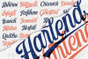 Harlend 6 fonts with extras intro example image 8